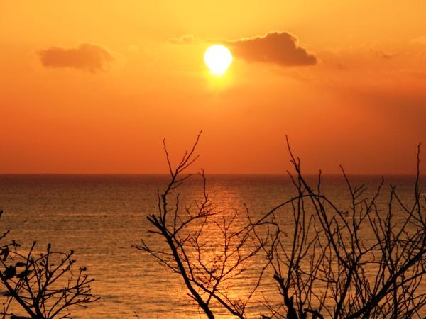 海の別邸ふる川から見える今日の朝日~平成28年3月11日